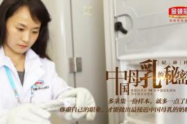 伊利奶粉依托于16年母乳研究 夯实品质为下一代健康护航