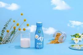 植选燕麦奶健康吗 丰富β-葡聚糖及膳食纤维带来营养守护